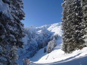 winter-110253_640