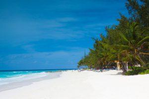 Überwintern auf Barbados
