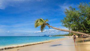 Überwintern auf Martinique