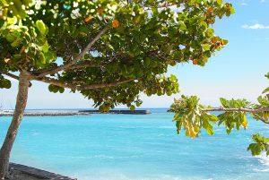 Überwintern auf La Reunion