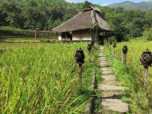 Überwintern in Laos