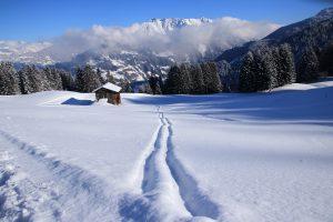 Skiurlaub Montafon